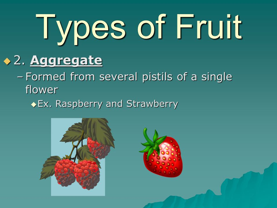 Types of Fruit 2. Aggregate