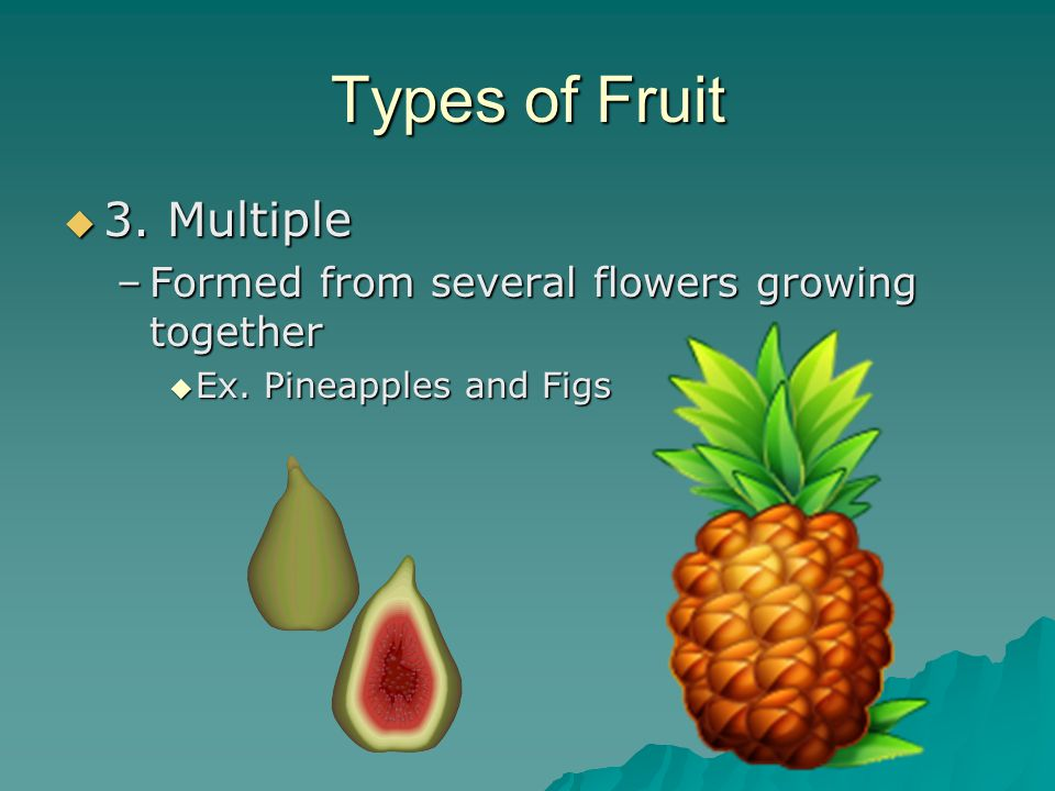 Types of Fruit 3. Multiple