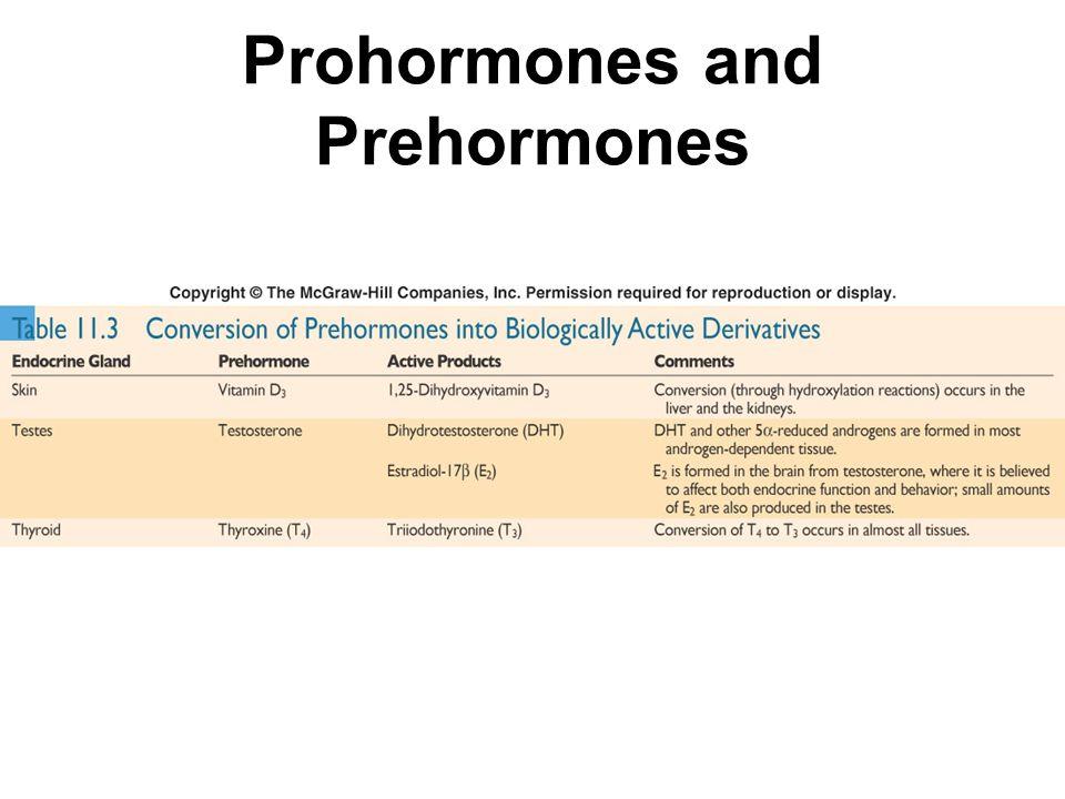 Prohormones and Prehormones