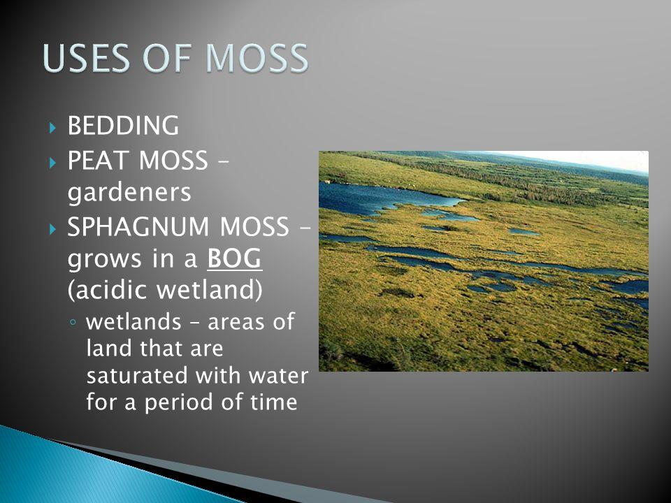 USES OF MOSS BEDDING PEAT MOSS – gardeners
