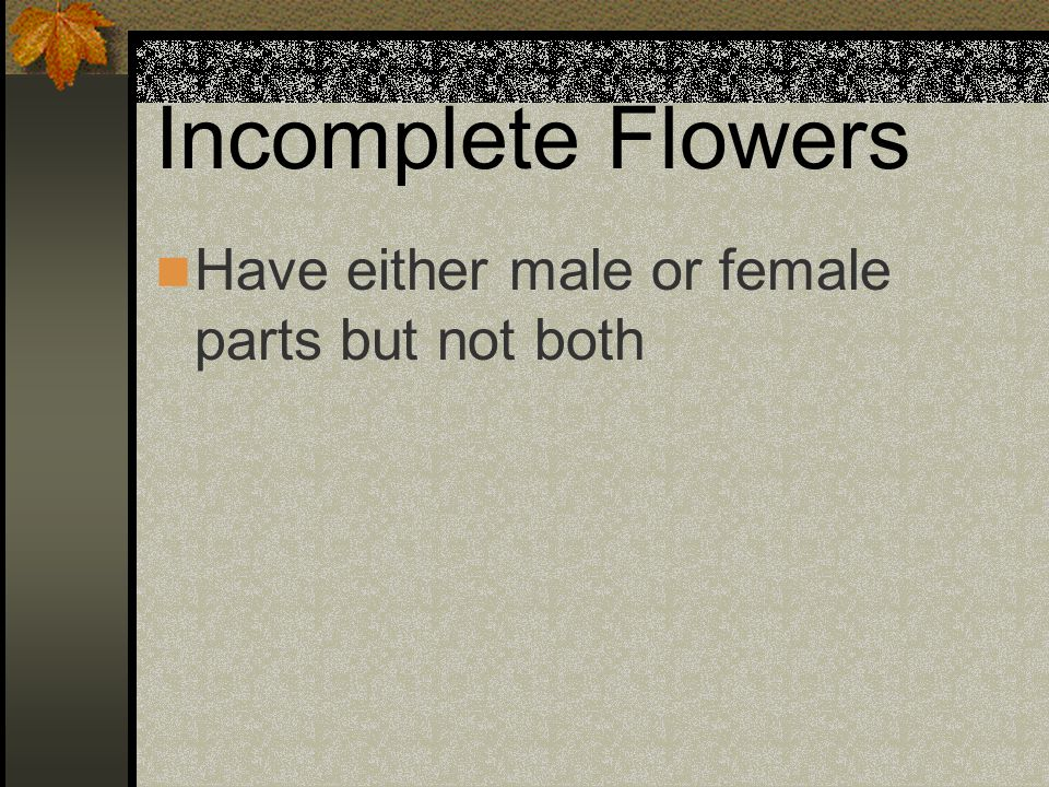 Incomplete Flowers Have either male or female parts but not both