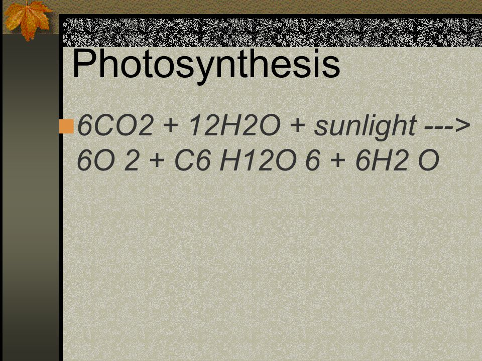 Photosynthesis 6CO2 + 12H2O + sunlight ---> 6O 2 + C6 H12O 6 + 6H2 O