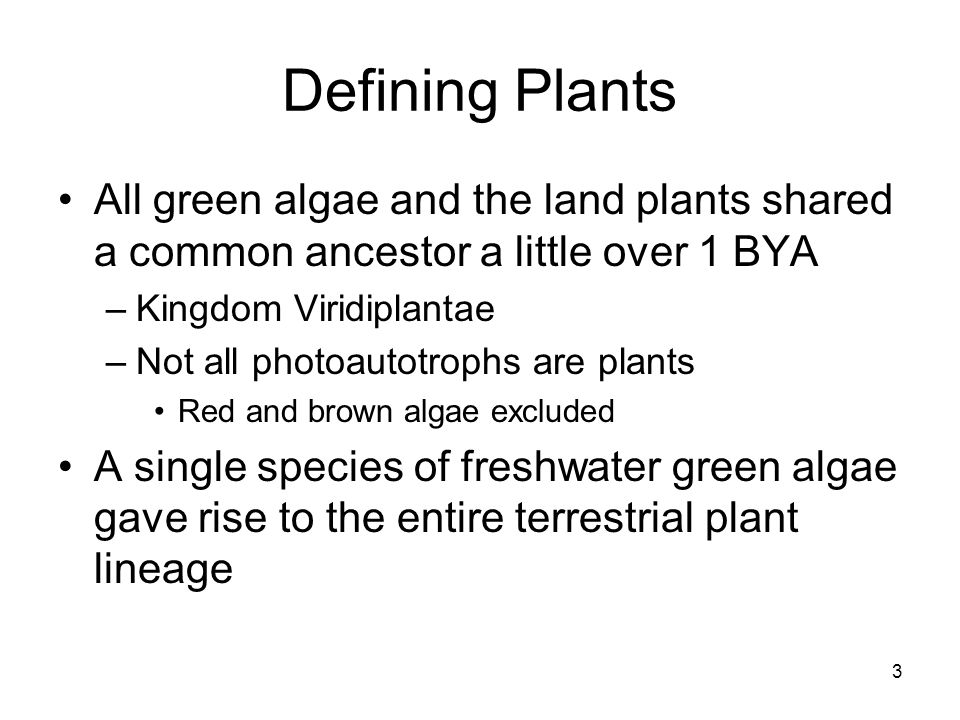 Defining Plants All green algae and the land plants shared a common ancestor a little over 1 BYA. Kingdom Viridiplantae.