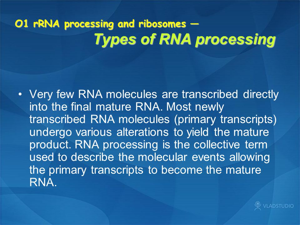 O1 rRNA processing and ribosomes — Types of RNA processing