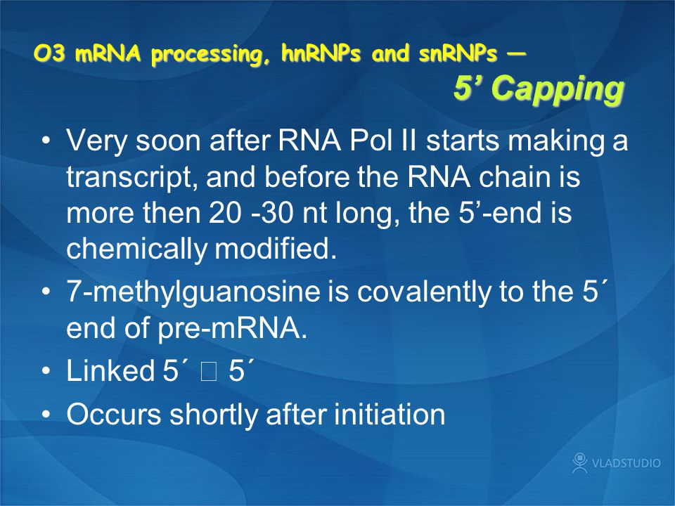 O3 mRNA processing, hnRNPs and snRNPs — 5' Capping