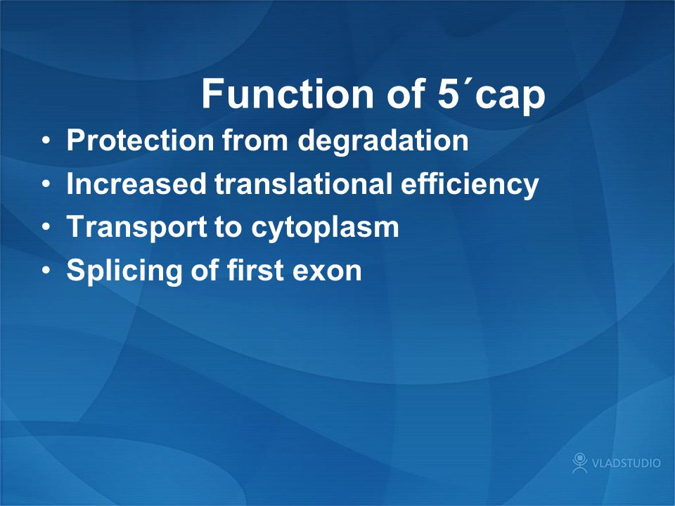 Function of 5´cap Protection from degradation