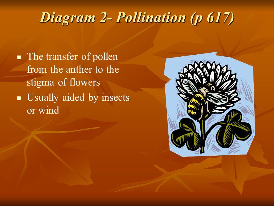 Diagram 2- Pollination (p 617)