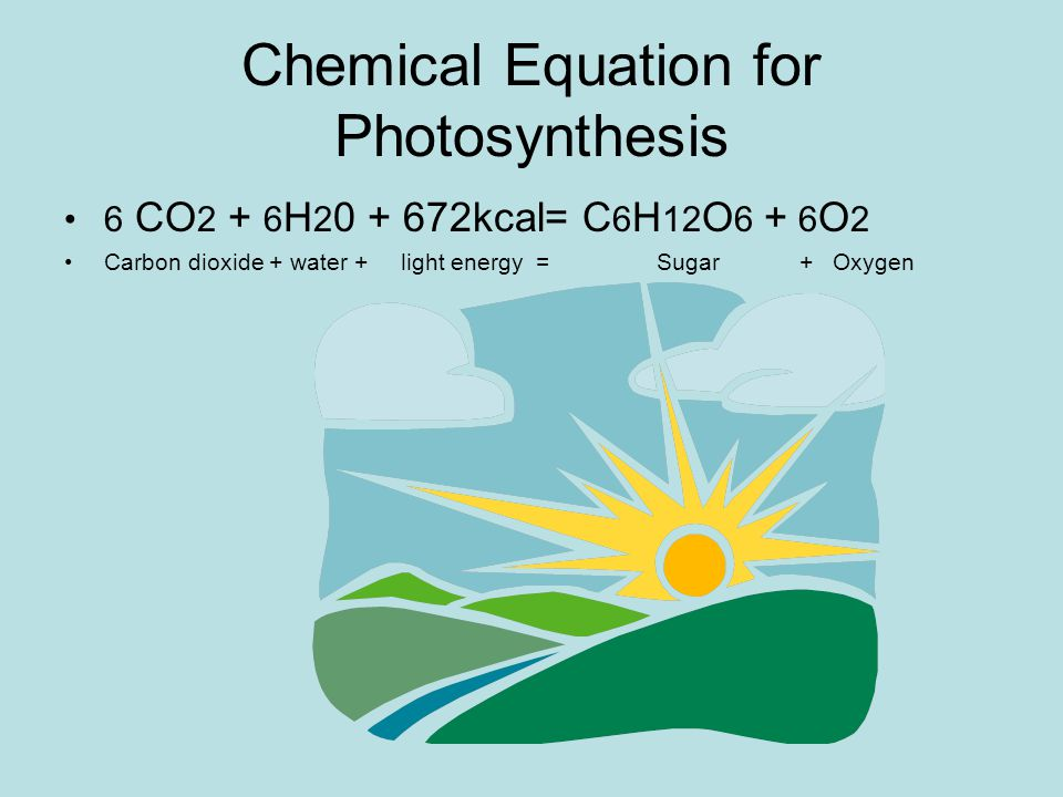 Chemical Equation for Photosynthesis