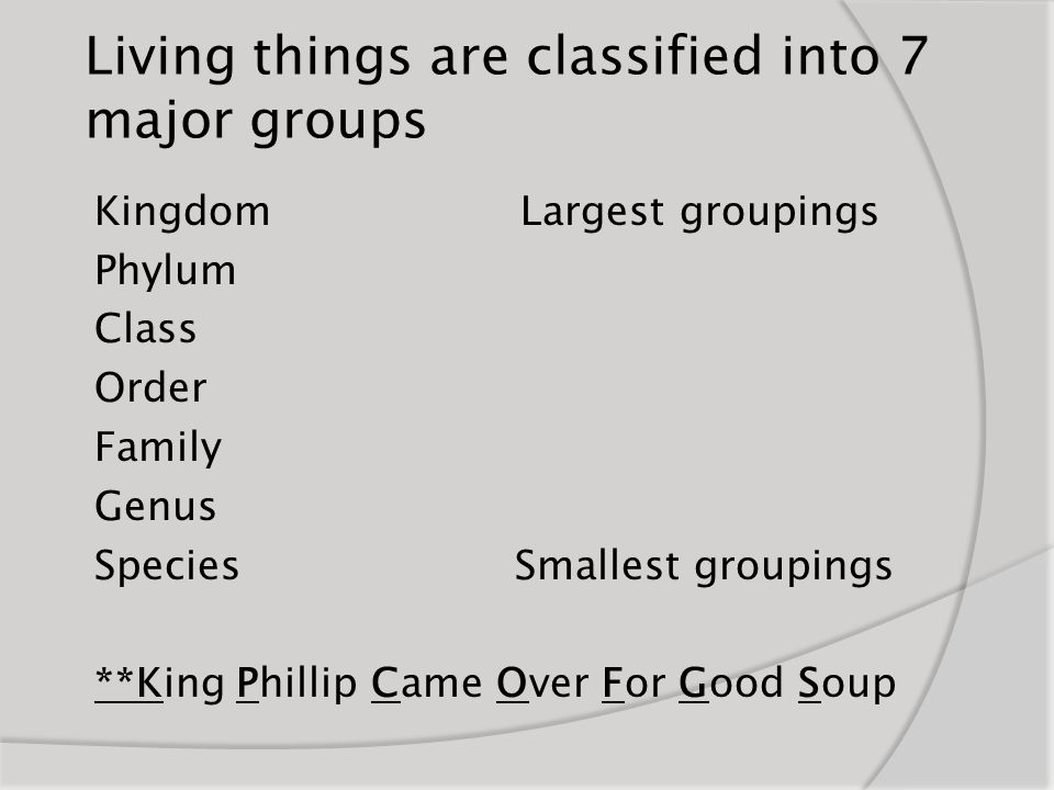 Living things are classified into 7 major groups