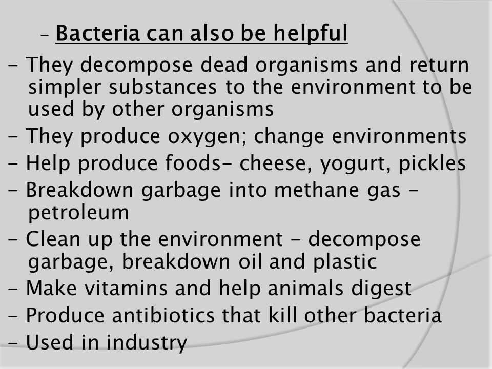 - Bacteria can also be helpful