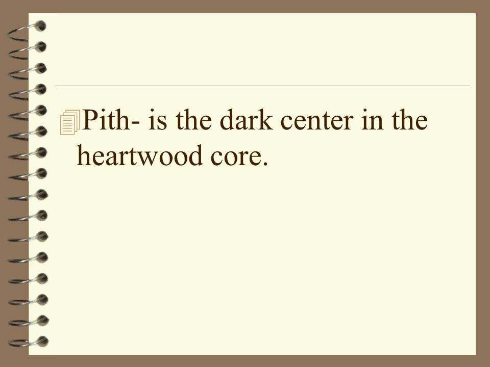 Pith- is the dark center in the heartwood core.