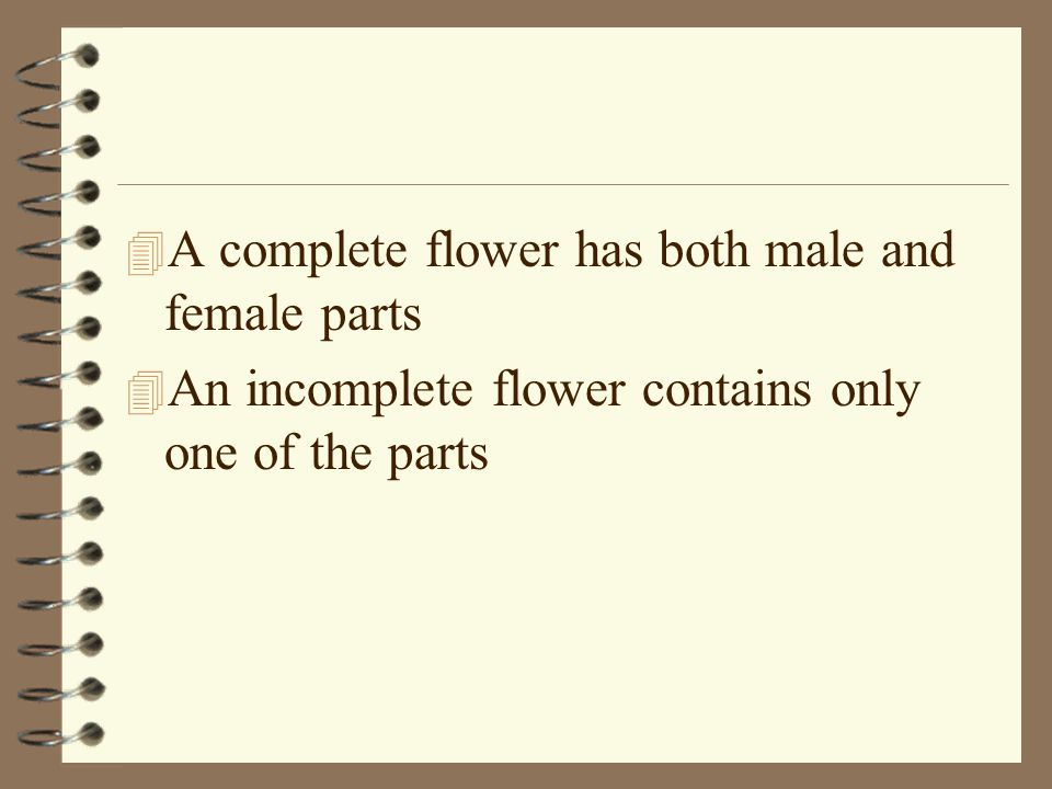 A complete flower has both male and female parts