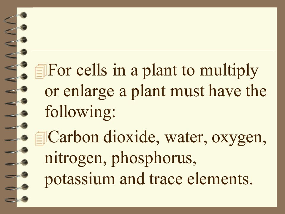 For cells in a plant to multiply or enlarge a plant must have the following: