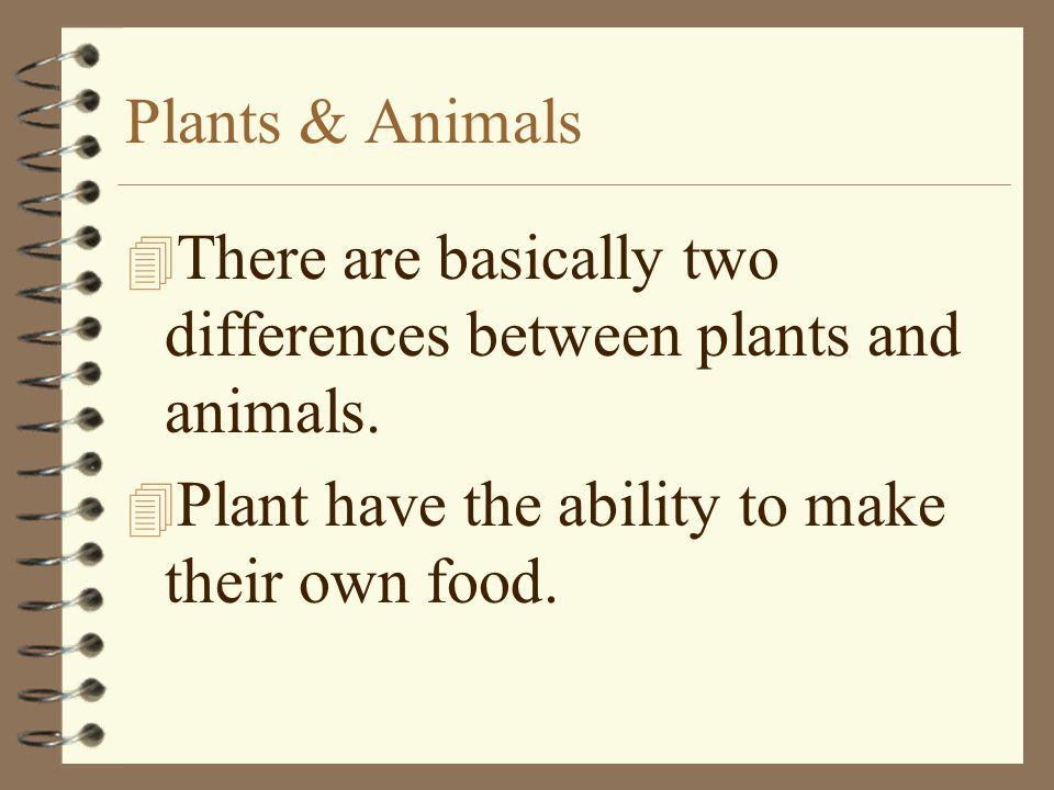 Plants & Animals There are basically two differences between plants and animals.