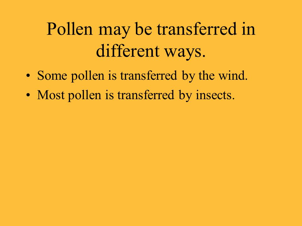 Pollen may be transferred in different ways.