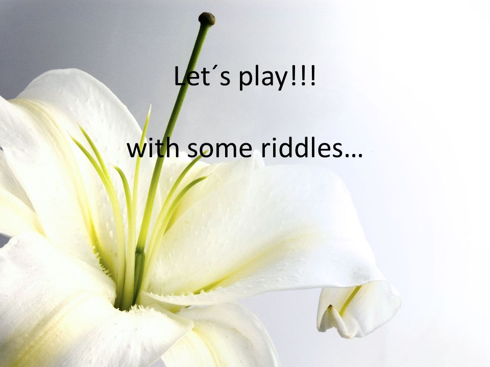 Let´s play!!! with some riddles…