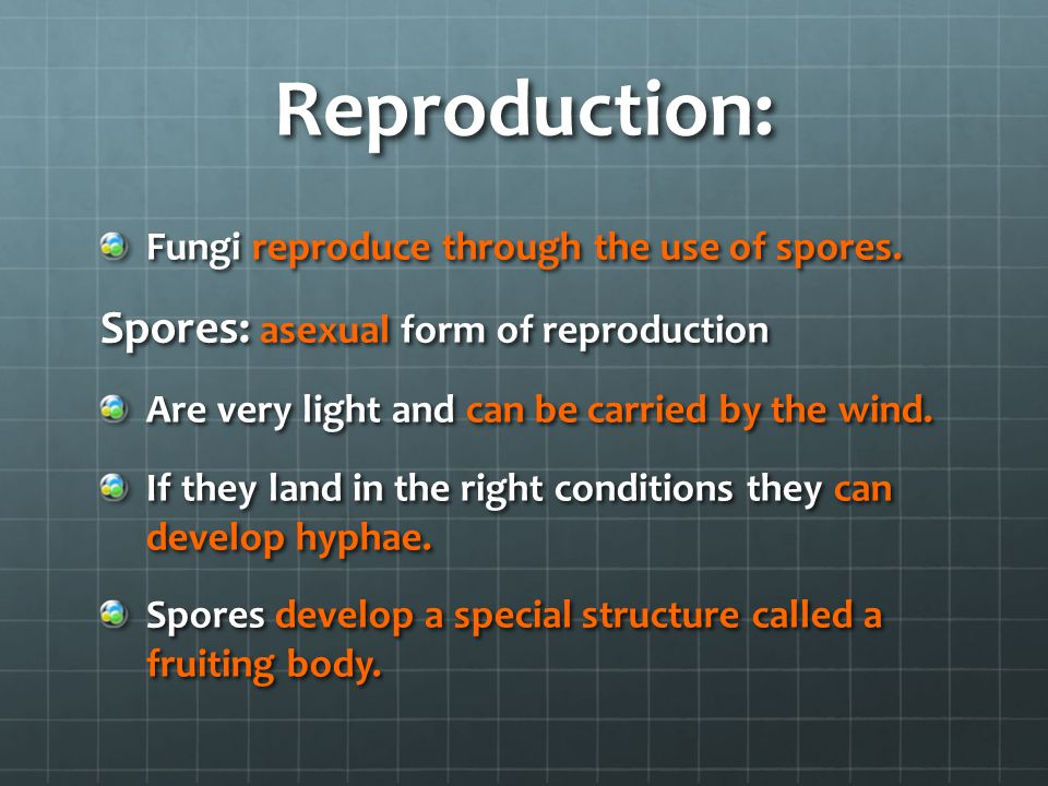 Reproduction: Spores: asexual form of reproduction