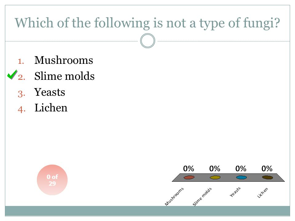 Which of the following is not a type of fungi
