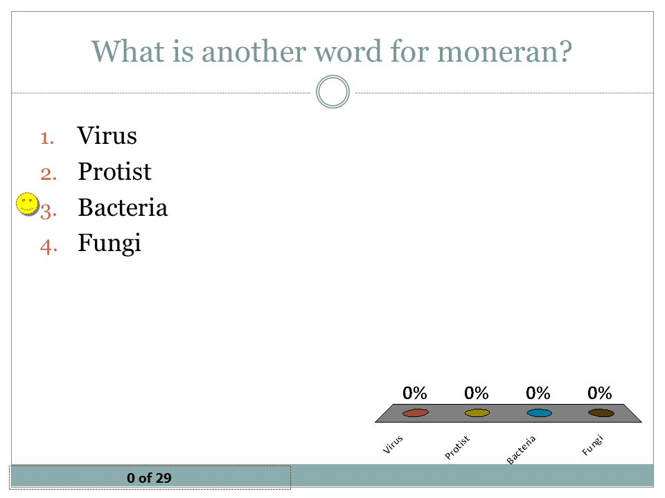 What is another word for moneran