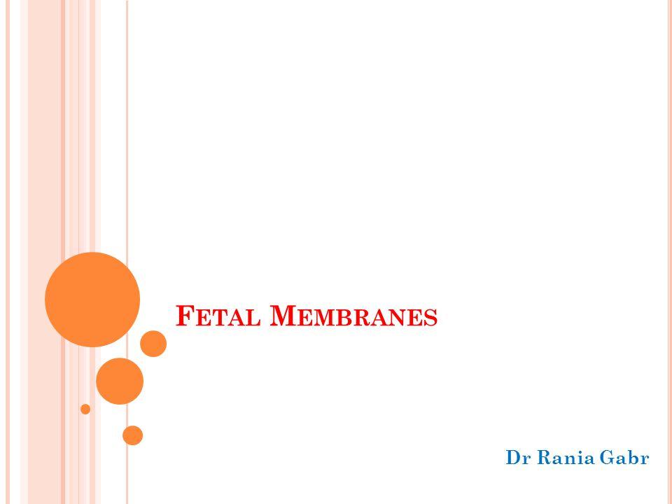 Fetal Membranes Dr Rania Gabr