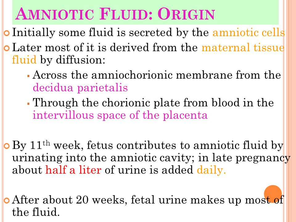 Amniotic Fluid: Origin