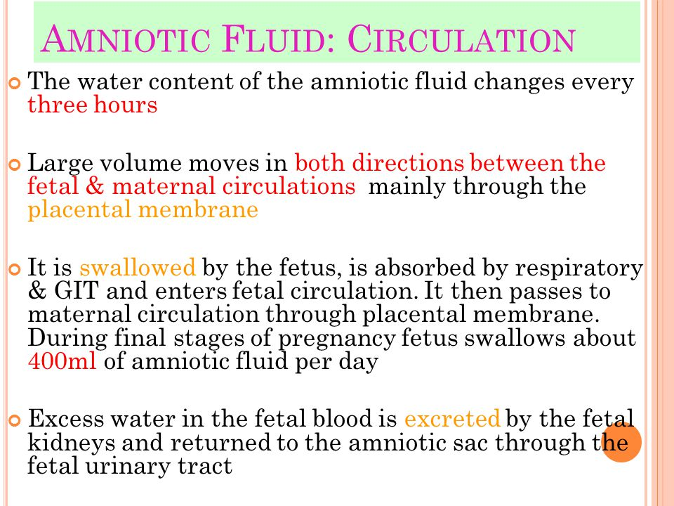 Amniotic Fluid: Circulation