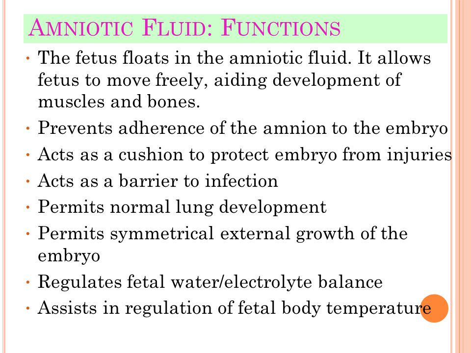 Amniotic Fluid: Functions