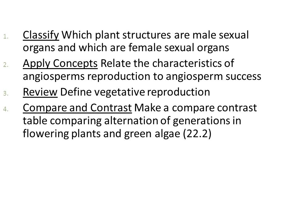 Classify Which plant structures are male sexual organs and which are female sexual organs