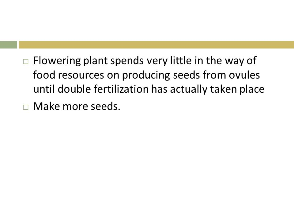 Flowering plant spends very little in the way of food resources on producing seeds from ovules until double fertilization has actually taken place