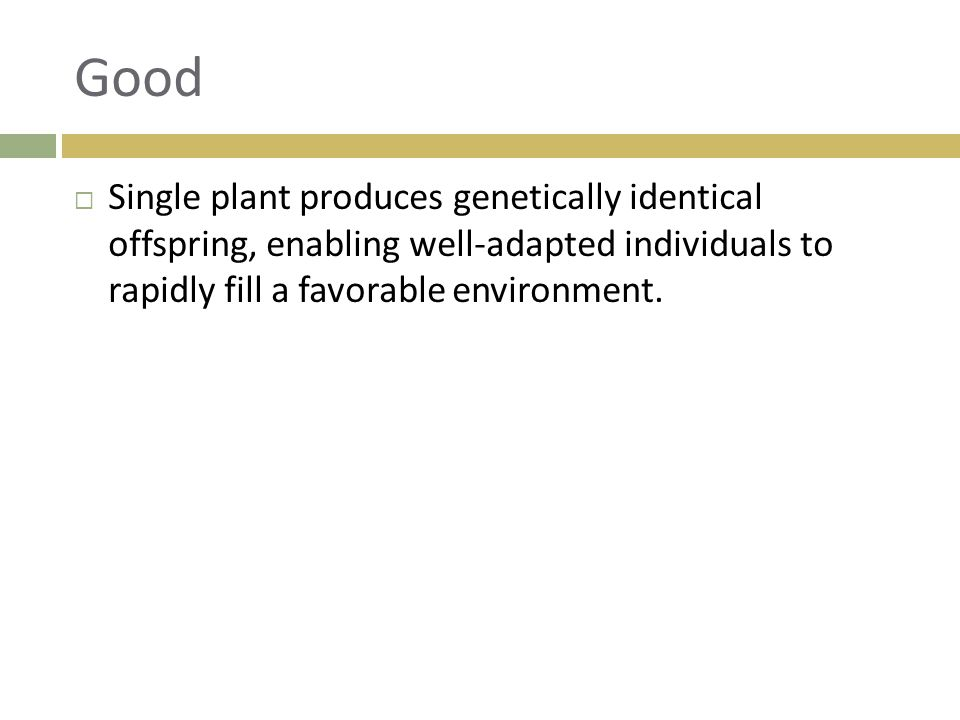 Good Single plant produces genetically identical offspring, enabling well-adapted individuals to rapidly fill a favorable environment.