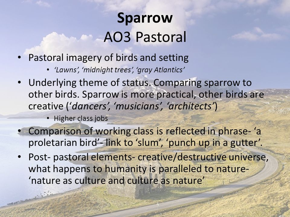 Sparrow AO3 Pastoral Pastoral imagery of birds and setting