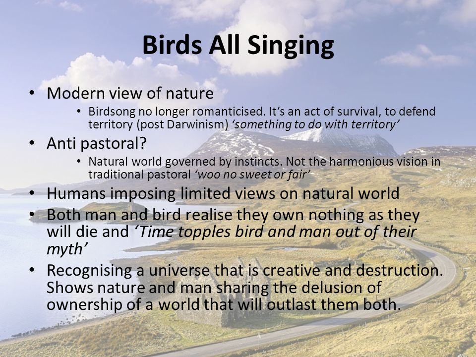 Birds All Singing Modern view of nature Anti pastoral