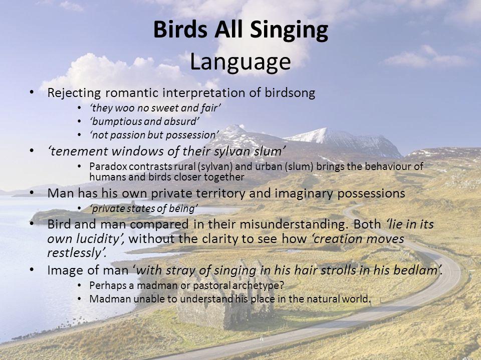 Birds All Singing Language