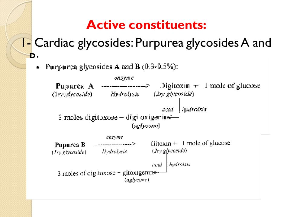 Active constituents: 1- Cardiac glycosides: Purpurea glycosides A and B: