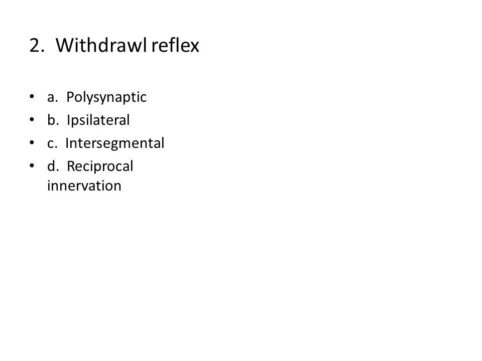 2. Withdrawl reflex a. Polysynaptic b. Ipsilateral c. Intersegmental