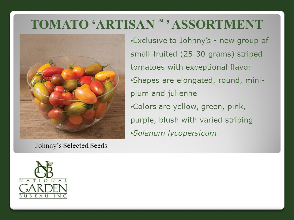 Tomato 'Artisan  ' assortment