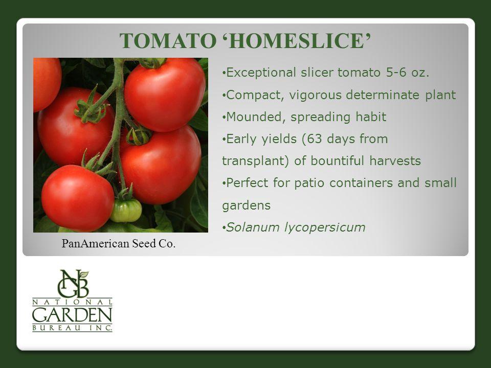Tomato 'Homeslice' Exceptional slicer tomato 5-6 oz.