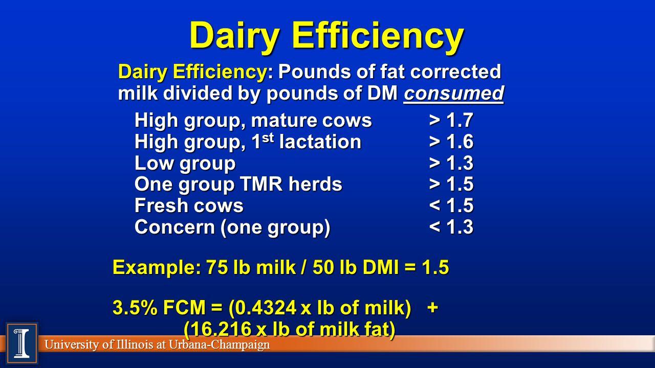Dairy Efficiency