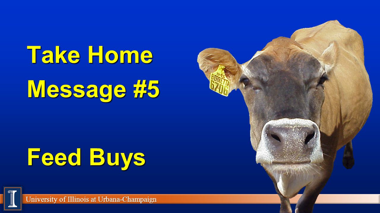 Take Home Message #5 Feed Buys
