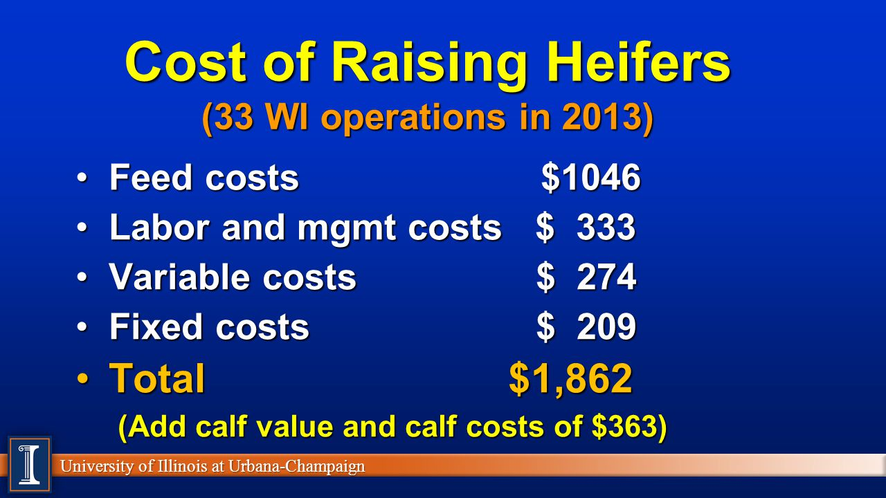Cost of Raising Heifers (33 WI operations in 2013)