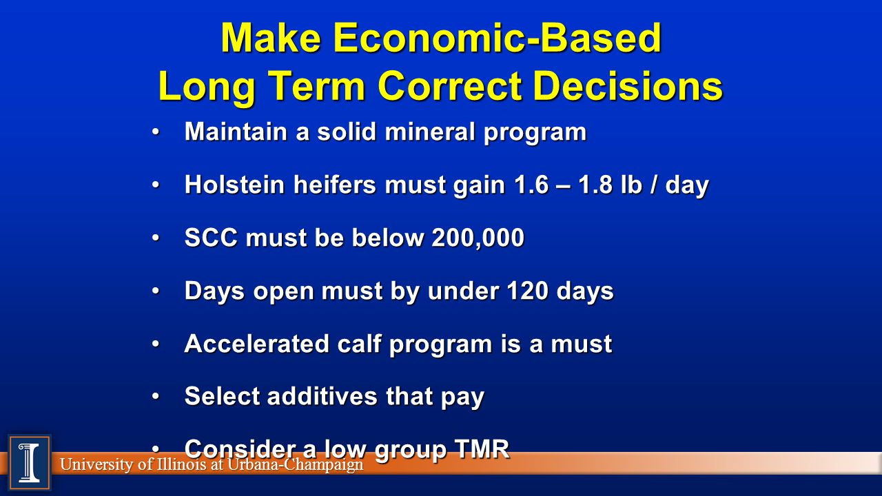 Make Economic-Based Long Term Correct Decisions