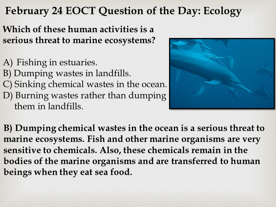 February 24 EOCT Question of the Day: Ecology