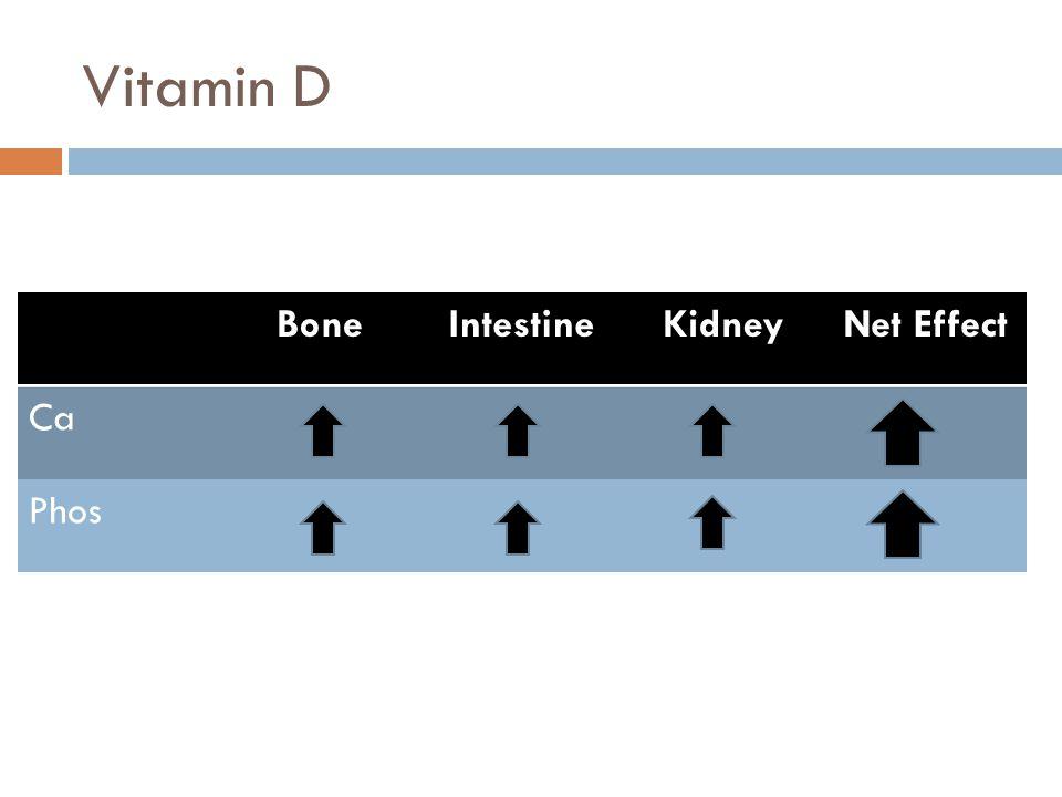 Vitamin D Bone Intestine Kidney Net Effect Ca Phos