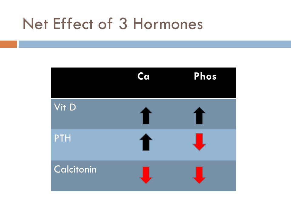 Net Effect of 3 Hormones Ca Phos Vit D PTH Calcitonin