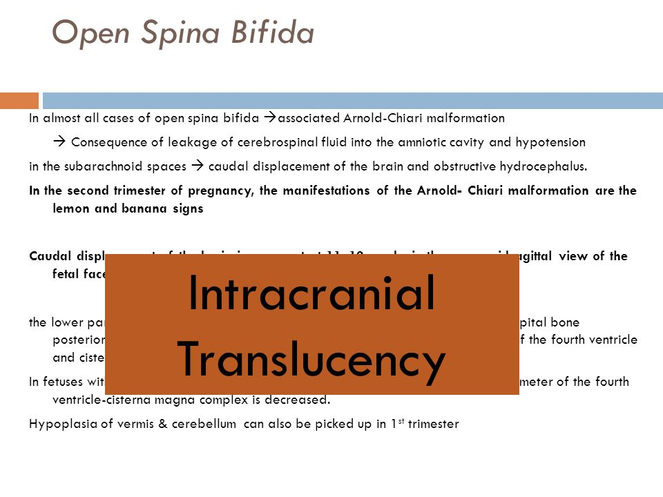 Intracranial Translucency