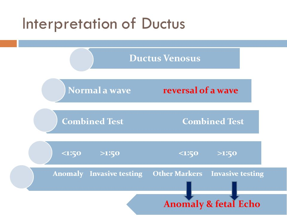 Interpretation of Ductus