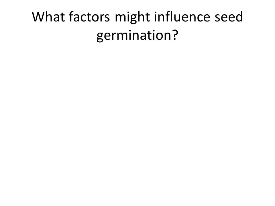 What factors might influence seed germination