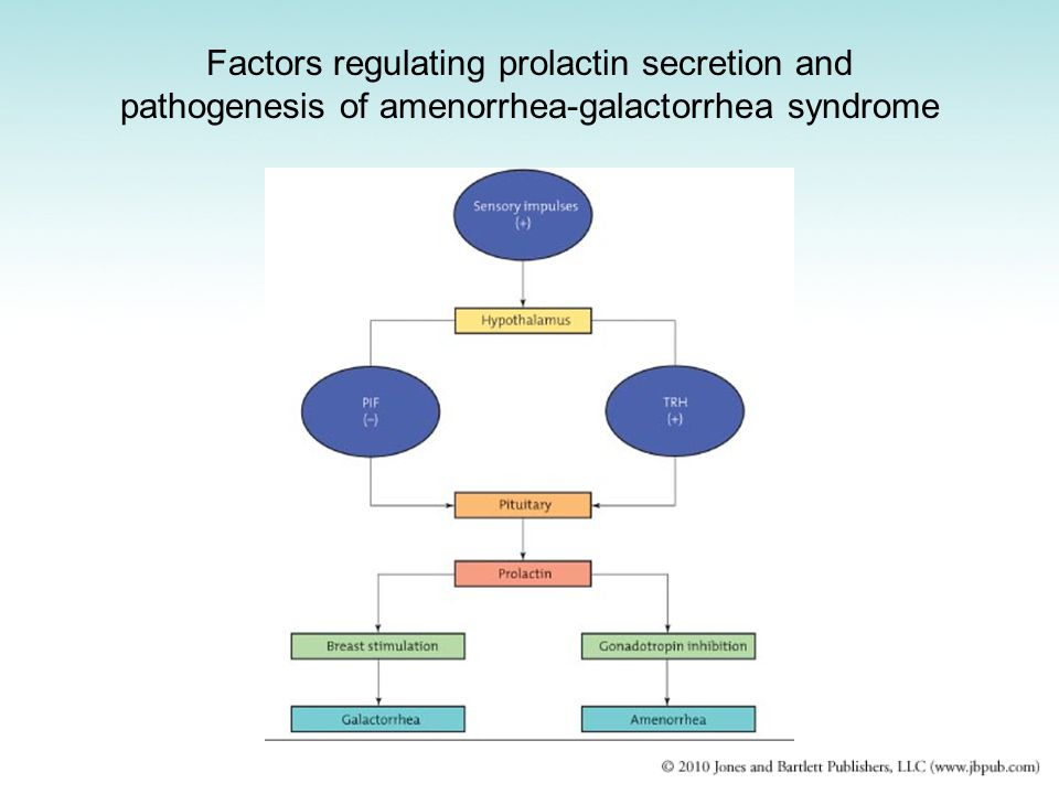 Factors regulating prolactin secretion and pathogenesis of amenorrhea-galactorrhea syndrome