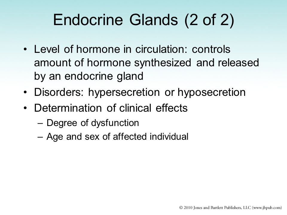 Endocrine Glands (2 of 2) Level of hormone in circulation: controls amount of hormone synthesized and released by an endocrine gland.