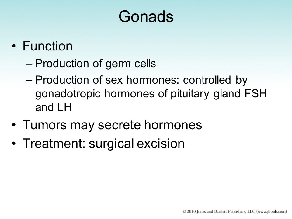 Gonads Function Tumors may secrete hormones